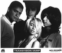 transvision-vamp-small